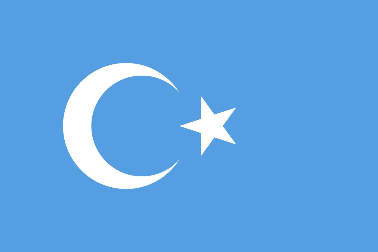 Dogu Turkistan Bayragi