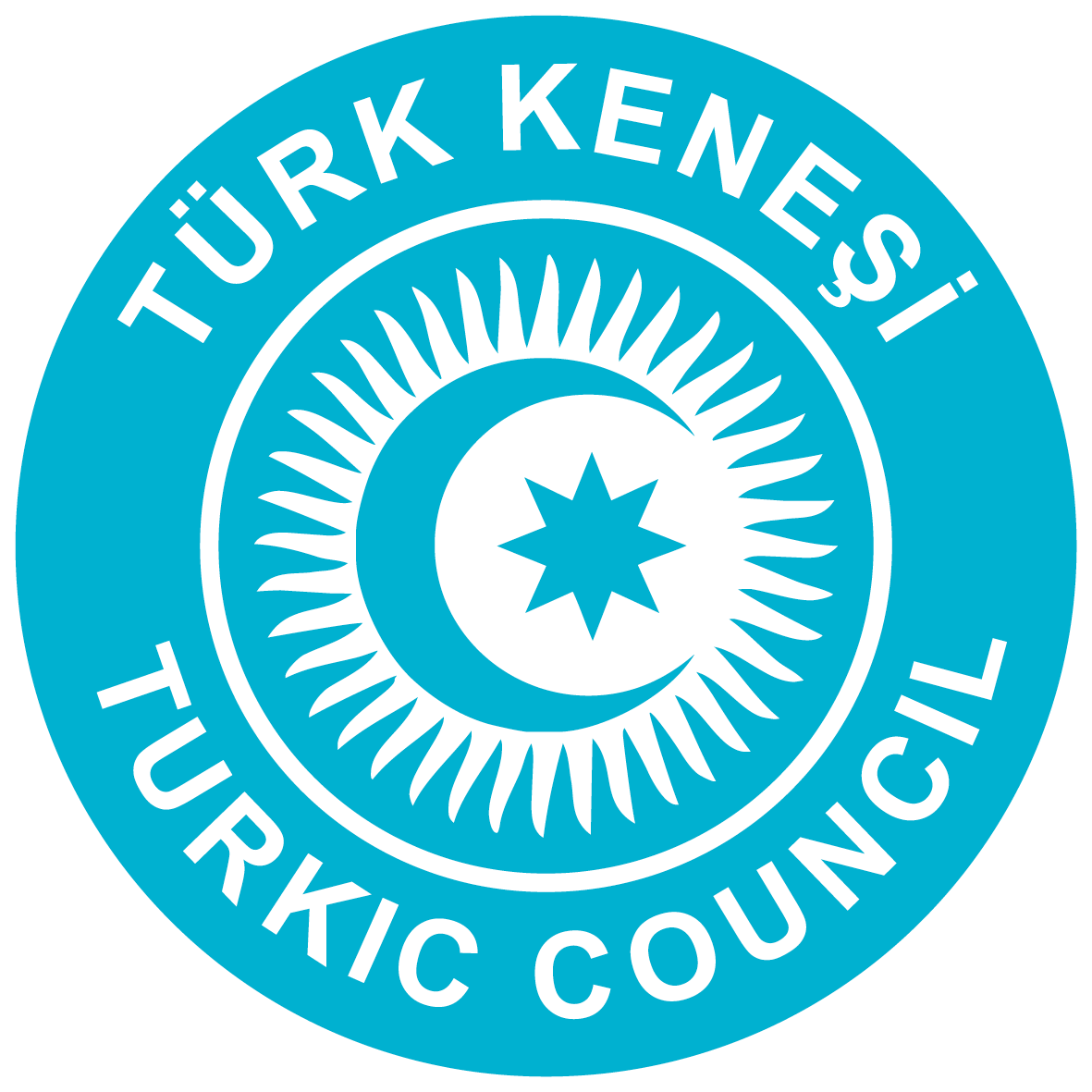 Turk Kenesi Turkic Council Logo 2020