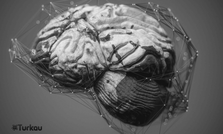 Beyin ve Internet